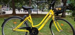 yellow-capa.jpg